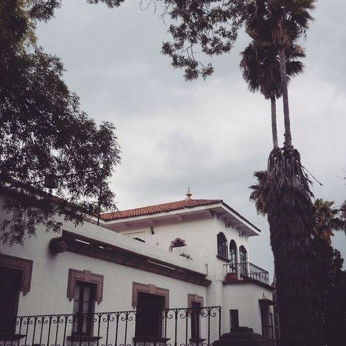 UniversidadCarolina
