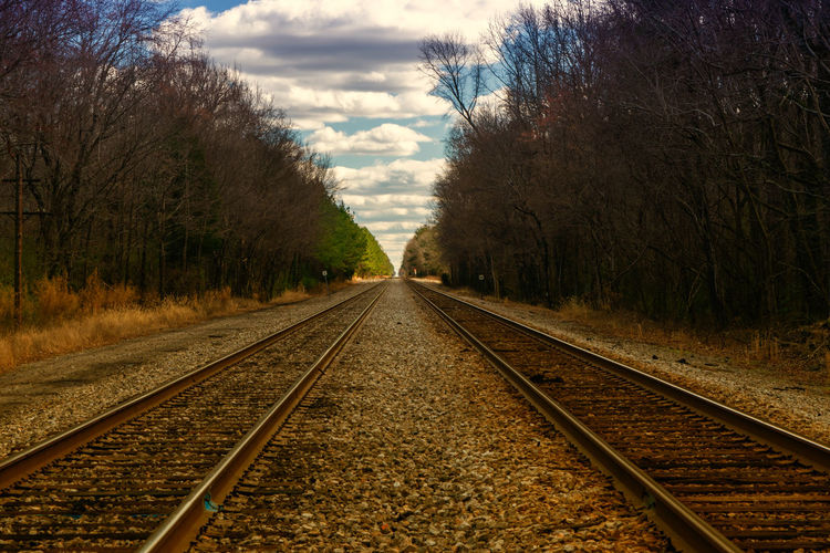 View of railroad track along trees