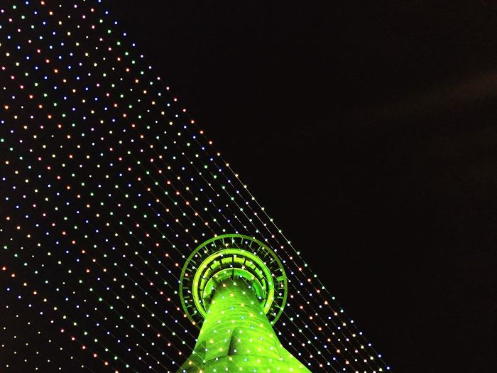 New Zealand Auckland Night Scene