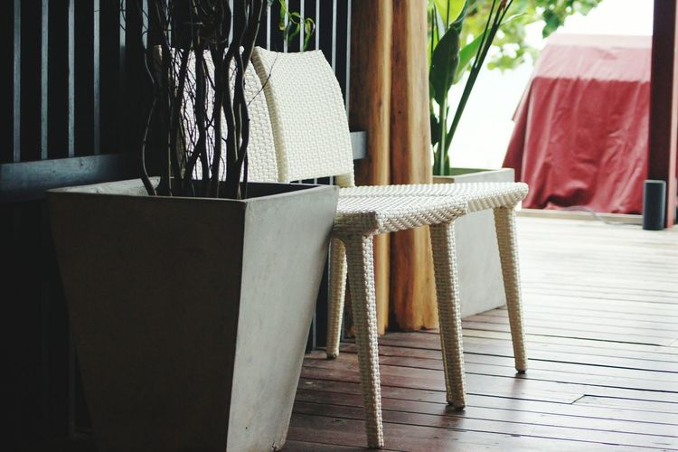 Close-up of empty chair by potted plant at home