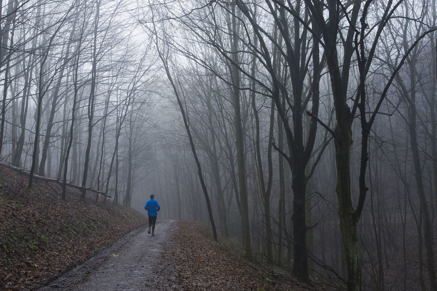 Blue Jacket Cold Temperature Fog Forest Jogger Men Nature One Person Outdoors People Runner Trees Winter