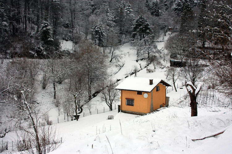 House on snow covered land by trees and buildings