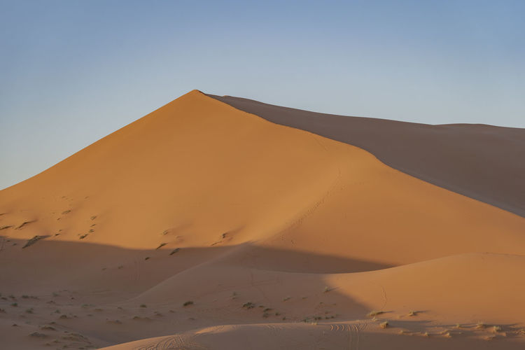 Desert Sand Dune Landscape Sand Arid Climate Tranquility Clear Sky No People Remote Sunlight Red Sand Sahara Sahara Desert North Africa Middle East Morocco Desert Beauty Desert Landscape Atmospheric Nature Tranquil Scene Sky Land Day Red Sand Dunes