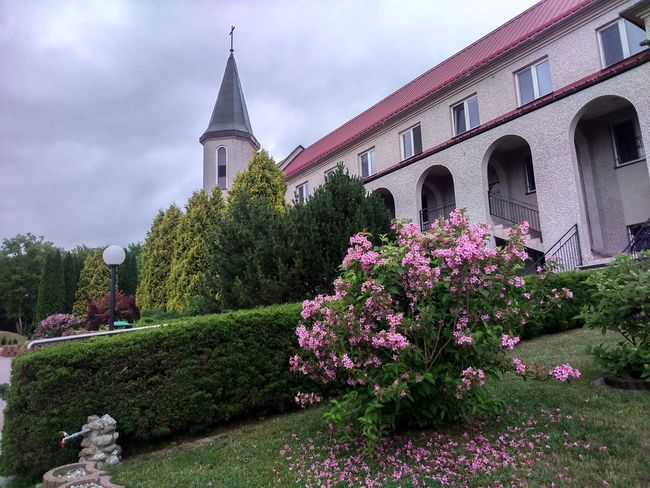 Architecture Flower Building Exterior No People Built Structure Outdoors Plant Nature Day Sky Beauty In Nature Yasmin  Bloom Blooming Blooming Bushes Monastery Carmelitemonastery Carmelite Carmelite Monastery Carmelites Carmelite Church Carmelite Convent
