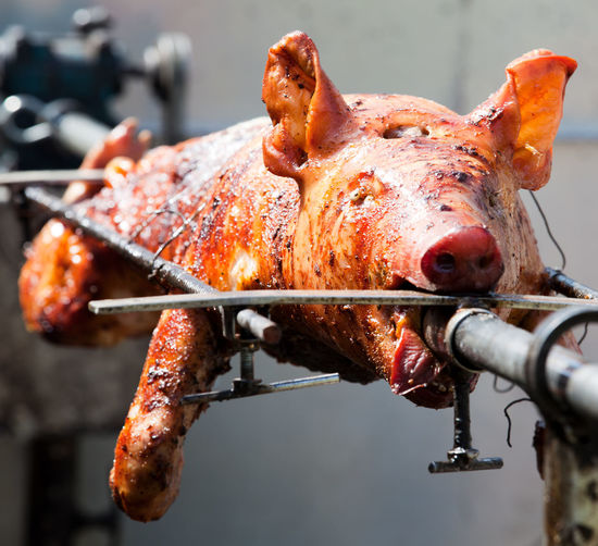 Close-up of pig being grilled