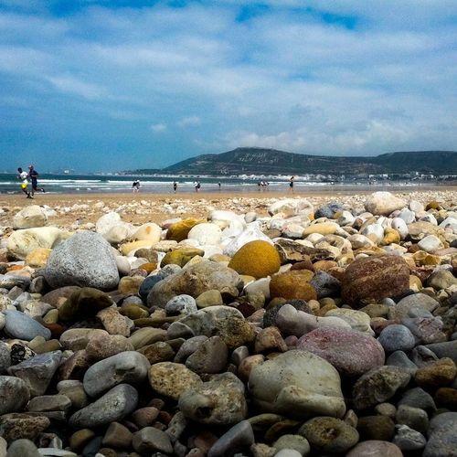 Beach Day Land