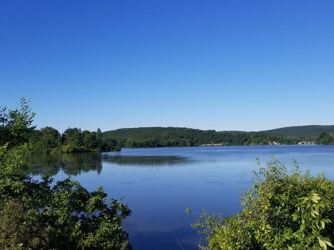 Lakescape Beauty In Nature Scenics Scenery Springtime Spring Nature Outside Beautiful Pennsylvania Tree Water Clear Sky Flower Lake Blue Sky Landscape Plant Standing Water Lakeshore Reflection Lake Lush - Description Plant Life Calm The Great Outdoors - 2018 EyeEm Awards