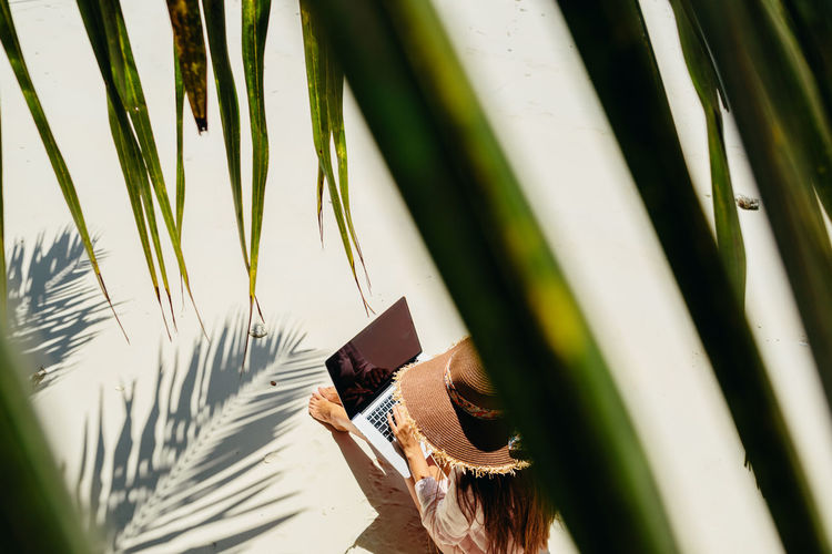 High angle view of woman using laptop while sitting at beach seen through leaves