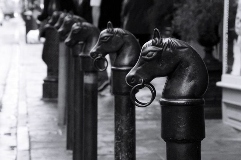 Horse pattern bollards in city