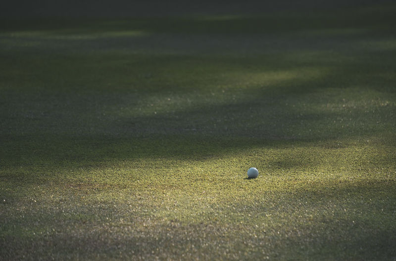 Surface level of golf ball