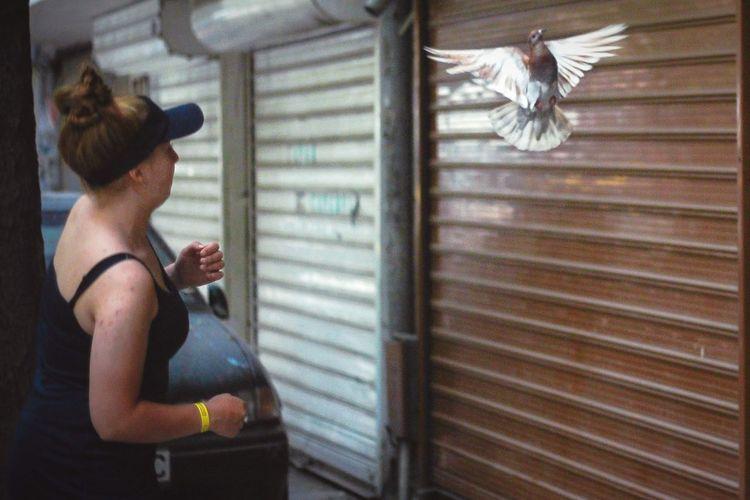 Rear view of woman looking at bird