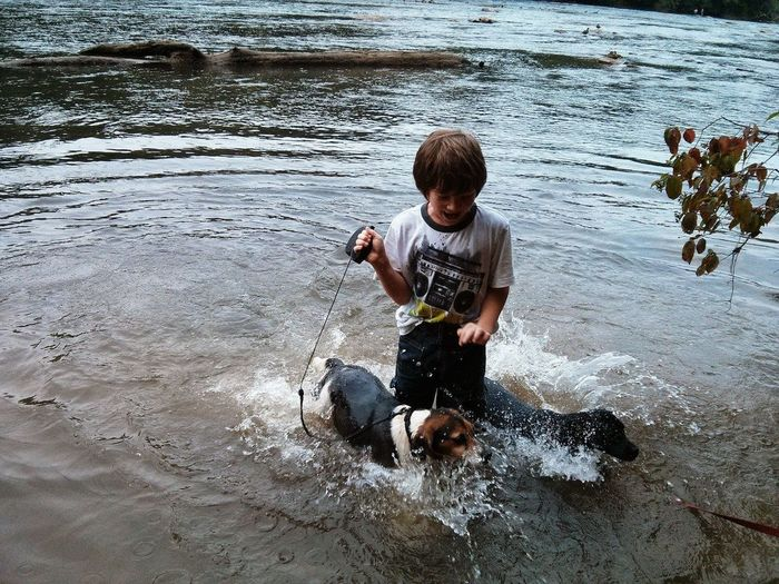 High angle view of boy with dogs in lake