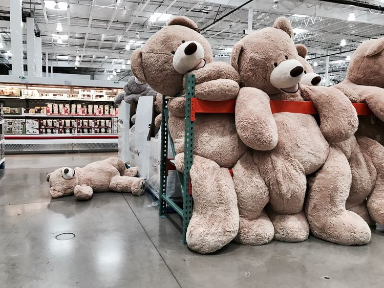 2017, you keep me hangin' on... Teddy Bear Stuffed Toy No People Large Group Of Objects Hangover