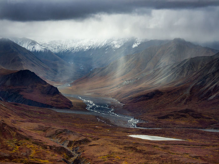 Autumn tundra, valleys, braided riverbeds, and snowcapped mountains of denali national park, alaska.