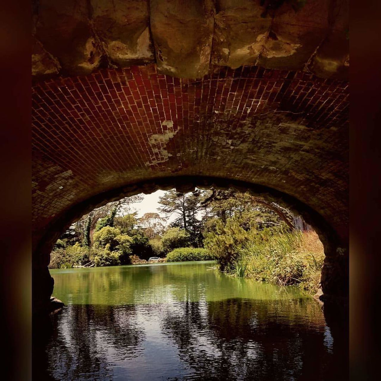 reflection, arch, bridge - man made structure, connection, water, architecture, day, built structure, no people, outdoors, tree, nature, sky