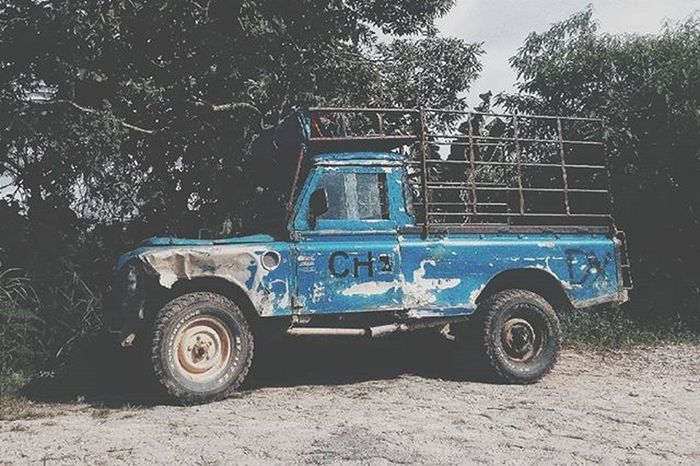 //Old truck. 🚙 Cameronhighland 🗻