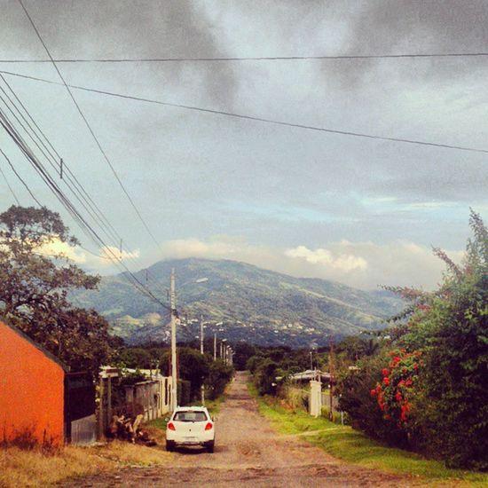 Camino de campo Landscape