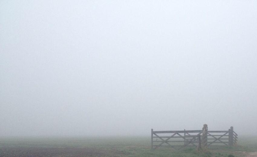 Mission Mystery The Minimalist Chasing Fog Eyem Misty Day