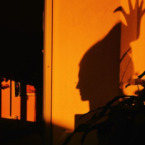 Portrait of silhouette man against orange wall