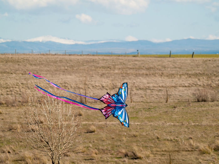 View of kite on field against sky