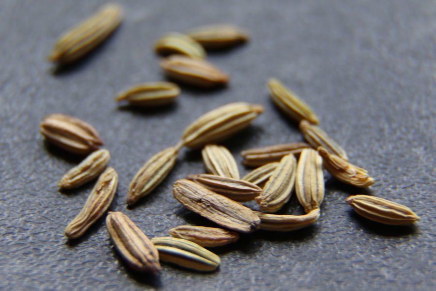 Fennel seeds. Food And Drink Still Life Seed Ingredient Food Spice Dried Food Large Group Of Objects Healthy Eating Full Frame No People Indoors  Close-up Day Fennel Seed Fennel Fennelseeds