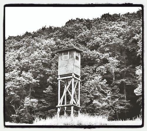 Little tower Capa Filter Capa Nature