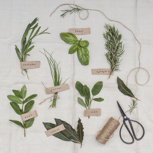High angle view of aromatic herbs arranged on a vintage cloth