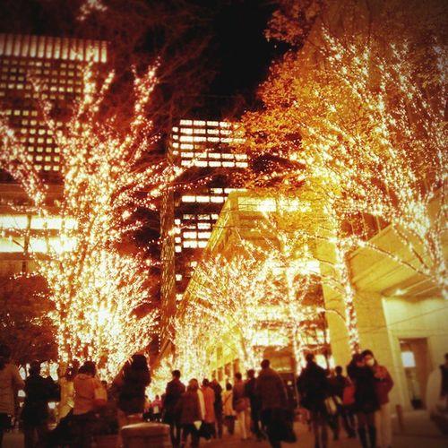 行幸通り、キラッキラ✨(☆o☆) Vscocam 東京 Japan 丸の内行幸通り 東京ミチテラス Winterscenery Winter Illumination