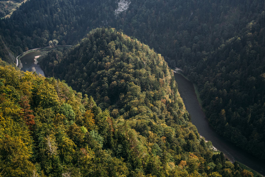 Above Aerial Dunajec Forest High Landscape Mountain Nature Outdoors Pieniny Poland River
