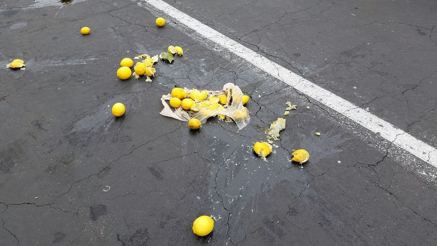 when life has lemons on the ground take a picture First Eyeem Photo