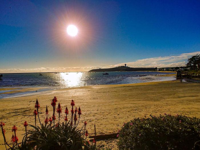 beach view at