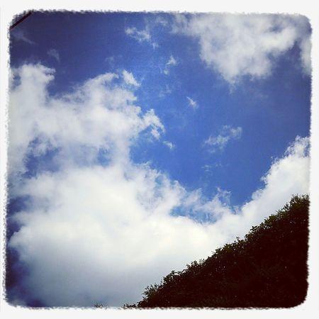 sky Summer