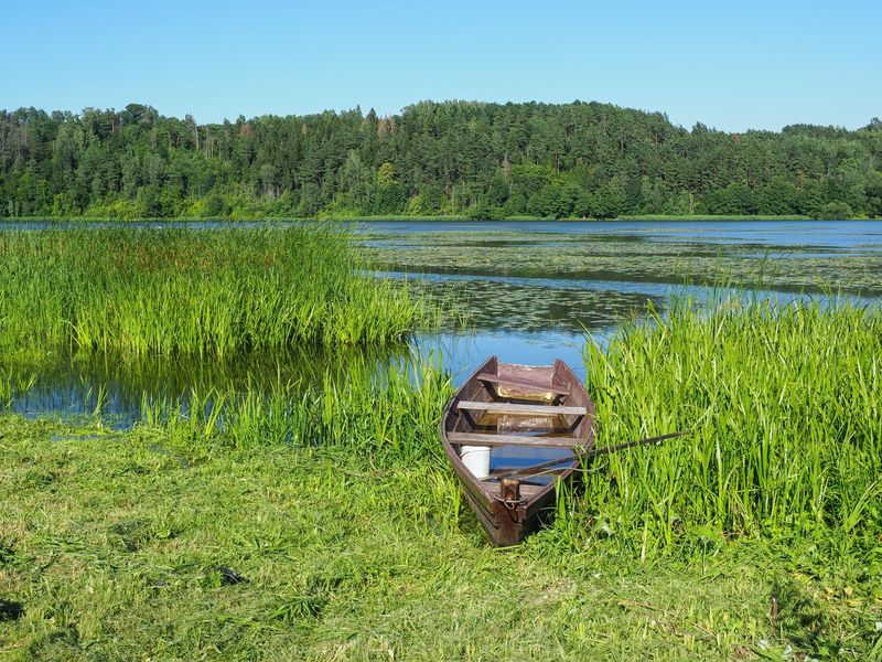 Lonely boat Great View Green Lithuania Lithuania Nature Lithuanian Countryside Nice View Beauty In Nature Boat Boat In The Lake Clear Sky Day Grass Great Landscape Green Color Lake Landscape Lithuania Travel Lonely Boat Nature No People Outdoors Scenics Tranquil Scene Tranquility Water