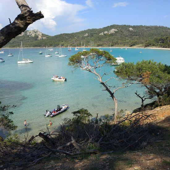 Plage de Notre Dame Mer Bateau Méditerranée Tree Water Sea Beach Sailboat Sand Sailing Ship