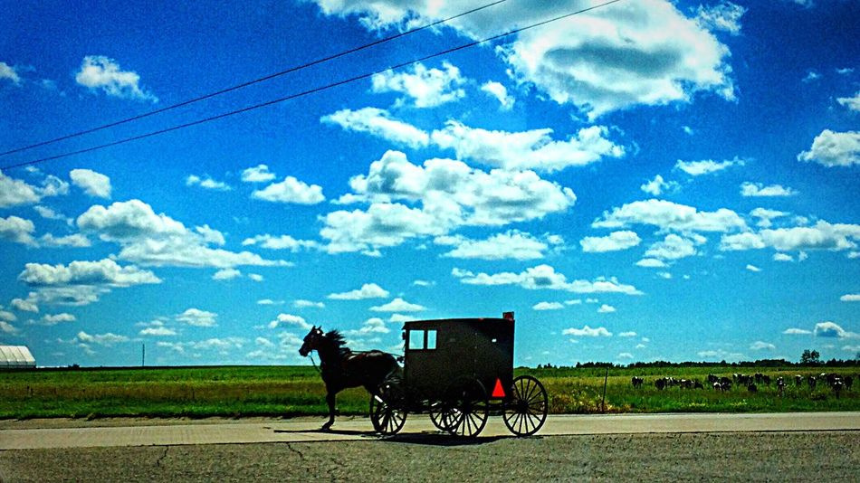 Wisconsin Amish Amish Country Amish Buggy Rural Landscape Rural Scenes Rural Scene Ruralphotography Rural America Rural Photography Rural America, Rural Wisconsin Sky And Clouds Afternoon Blues Summertime Peace And Quiet Rural Life Rural Lifestyle