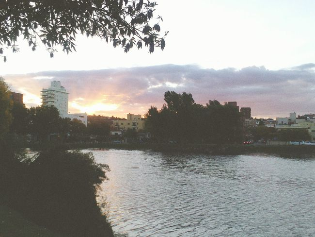 Sunny☀ Sunset Nature