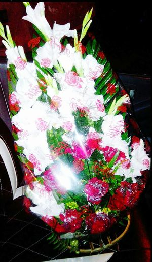 Rose🌹 Love Red Fragrance Soothing Life In Colors Shiny Sparkle Pleasant Kisses❌⭕❌⭕ Gift Syle Is Everyting Relaxing Petals Of Roses Lily