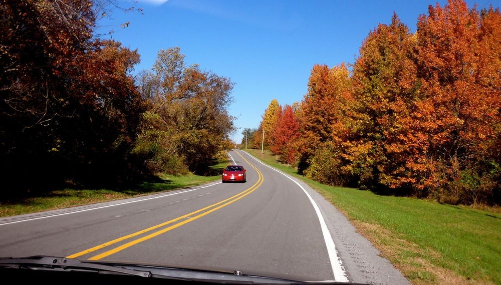I never wanna stop!!! Keep  Driving !!! Long Drive Fall Colors Fall Beauty of the Road United States The Road- Image Gallery Cars On The Road!! Winding Road Collection