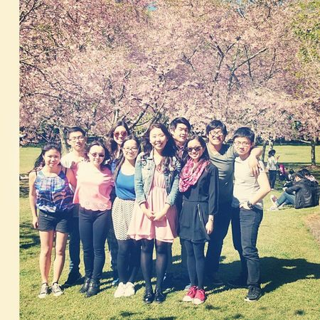 An afternoon picnic at Cornwall park to see the beautiful cherry blossoms! :) A much needed break before exam stress frenzy kicks in Cherryblossoms Park OneTreeHill Picnic friends sunny