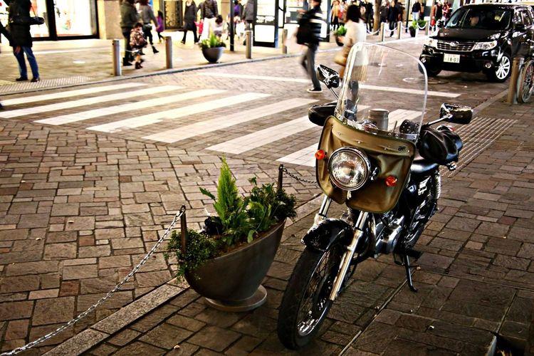 Tokyo Tokyo Night Bike