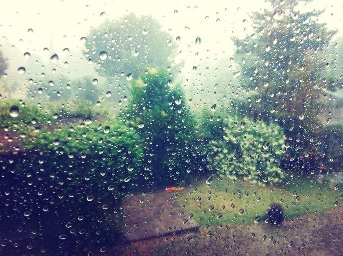 Adoro la pioggia!