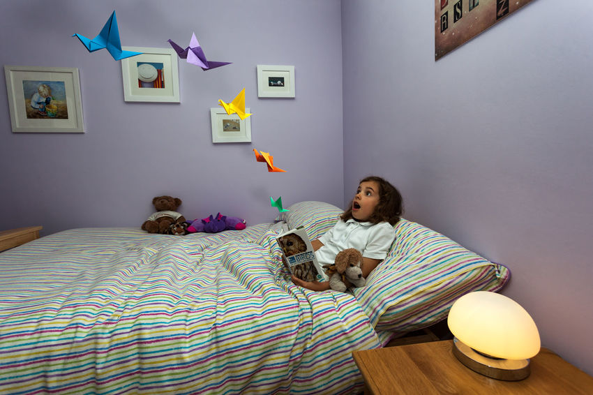 Young girl reading a book on birds surprised by origami birds flying off the pages. Astonished Bed Bedroom Birds Casual Clothing Childhood Comfortable Cute Domestic Life Elementary Age Girls Indoors  Innocence Lifestyles Lying Down One Person Origami Pillow Reading A Book Real People Relaxation Stuffed Toy Surprise Surreal Teddy Bear