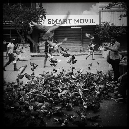 Fly ... Streetphotography WeAreJuxt.com Shootermag AMPt_community