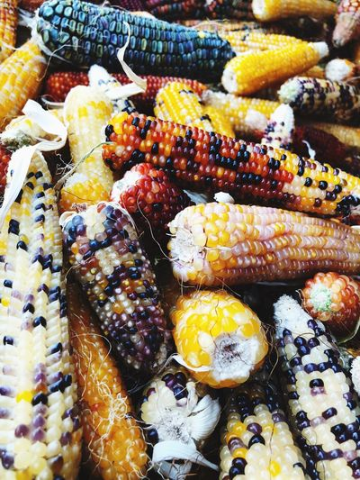 Decoration Corn Mais Gold Colored Red Color Fall Fall Colors Fallseason Colorful Colors Field Corn Gold Colored Red Color Fall Fall Colors Fallseason Colorful Colors Field Corn Food And Drink Freshness No People Indulgence Close-up Still Life Full Frame Sweet Food Variation Temptation Day EyeEmNewHere