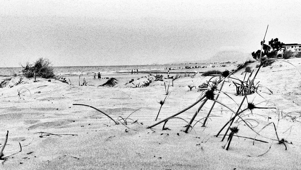 Duna... Beach Photography Dune Black & White