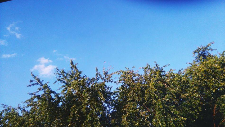 Sonntag = Sonnentag 😊 First Eyeem Photo