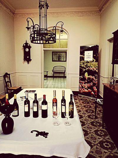 Fent un tast a les vinyes dels Aspres