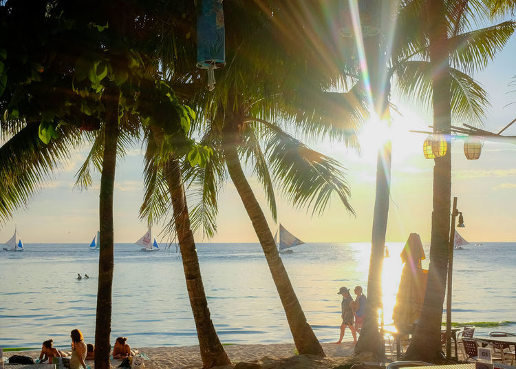 Philippines Relaxing Travel Beach Beauty In Nature Boracay Horizon Horizon Over Water Land Lens Flare Nature Outdoors Palm Tree Plant Real People Scenics - Nature Sea Sky Sun Sunlight Tree Tree Trunk Tropical Climate Trunk Water