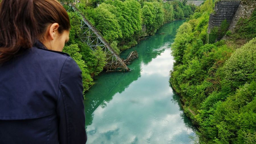 Rear view of woman looking at river in forest