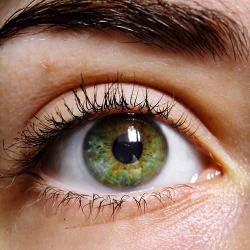 Human Eye Eyelash Human Body Part Close-up Looking At Camera Eyeball Eyesight Beauty Sensory Perception Iris - Eye Portrait One Person People Eyebrow Real People Adults Only One Woman Only Backgrounds Beautiful Woman Adult EyeEmNewHere
